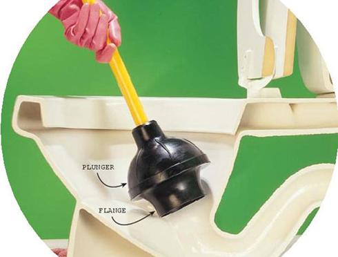 plunger toilet